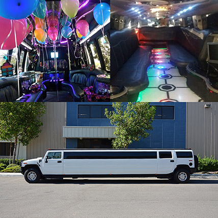 Royal White Limousine Experience: Experiential Gifts