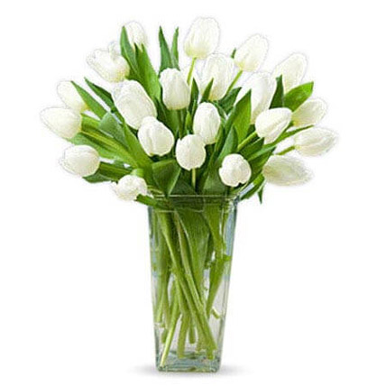 20 White Tulips: New Year Gifts