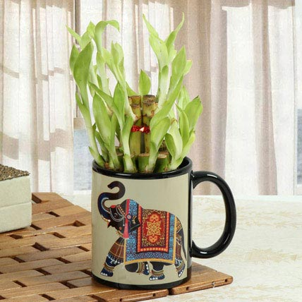 Lucky Bamboo In Printed Mug: Personalised Anniversary Mugs