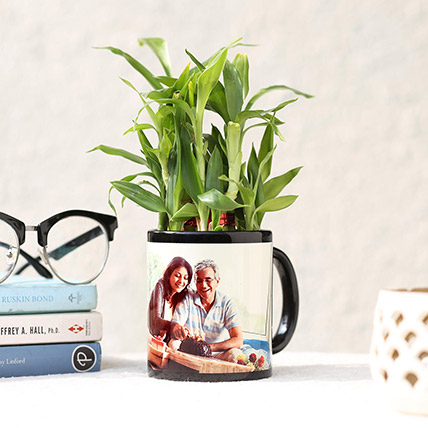 Lucky Bamboo In Personalised Black Mug: Fathers Day Personalised Gifts