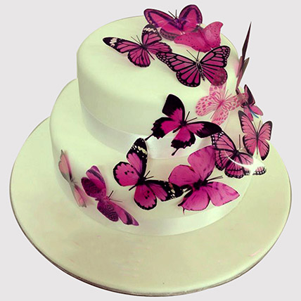 Pink Butterfly 2 Tier Cake: Butterfly Cakes