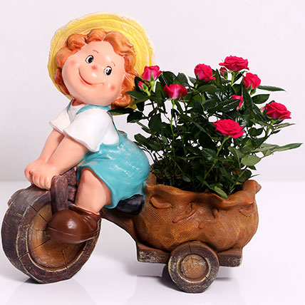 Lavish Rose Plant in Baby Cart Pot: Best Flowering Plants