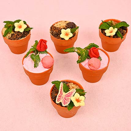 Exquisite Belgian Chocolate Mini  Edible Plant Treats: Chocolate Bouquet