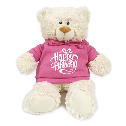 Fluffy Teddy Bear With Birthday Hoodie: New Arrival Gifts in Dubai