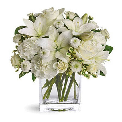 White Beauty:  Gifts Delivery