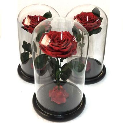 Preserved Roses in a Dome: Valentines Gifts Delivery in Philippines